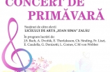 Concert de primavara